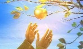 manzana jardin hesperides